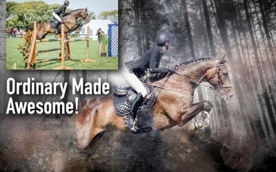 Horses Made Awesome!